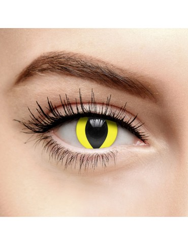 CONTACT LENS - YELLOW CAT EYE